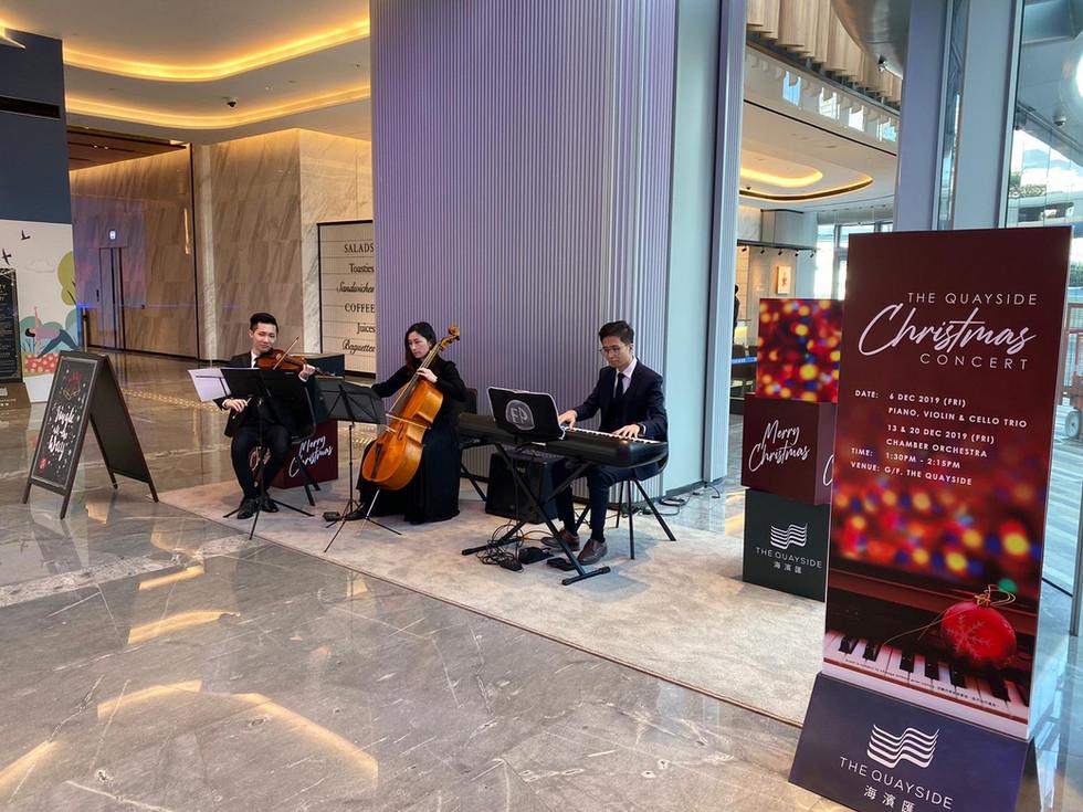 Live Music Performance (Piano Trio)