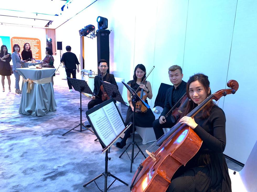 Live Music Performance (String Quartet)