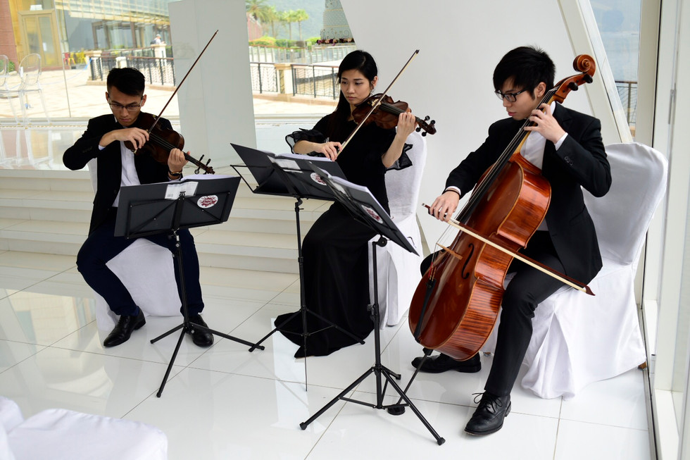 Wedding music performance (2 Violins & Cello)