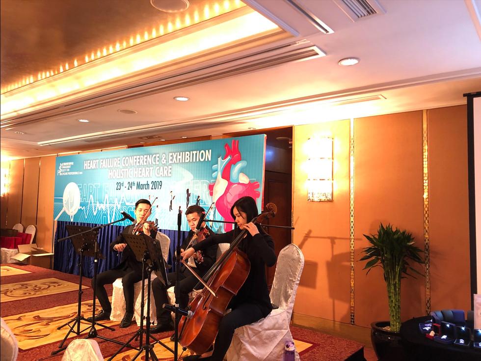 Live music performance (String trio)