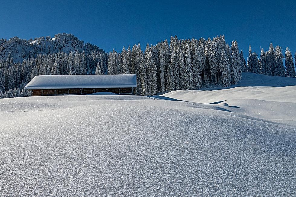 winter-4687645_1920.jpg
