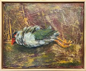 Finch (dead bird series)