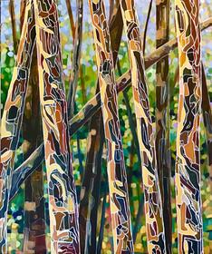 Paper barks (series)