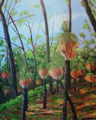 Grasstrees (series)