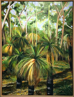 Grass Trees ( series)