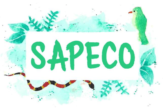Logo SAPECO.jpg