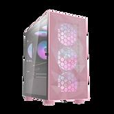 DLM21_pink.2031.png