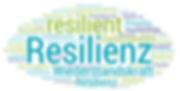 resilienzwolke.png