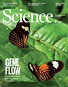 science.2019.366.issue-6465.cover.gif