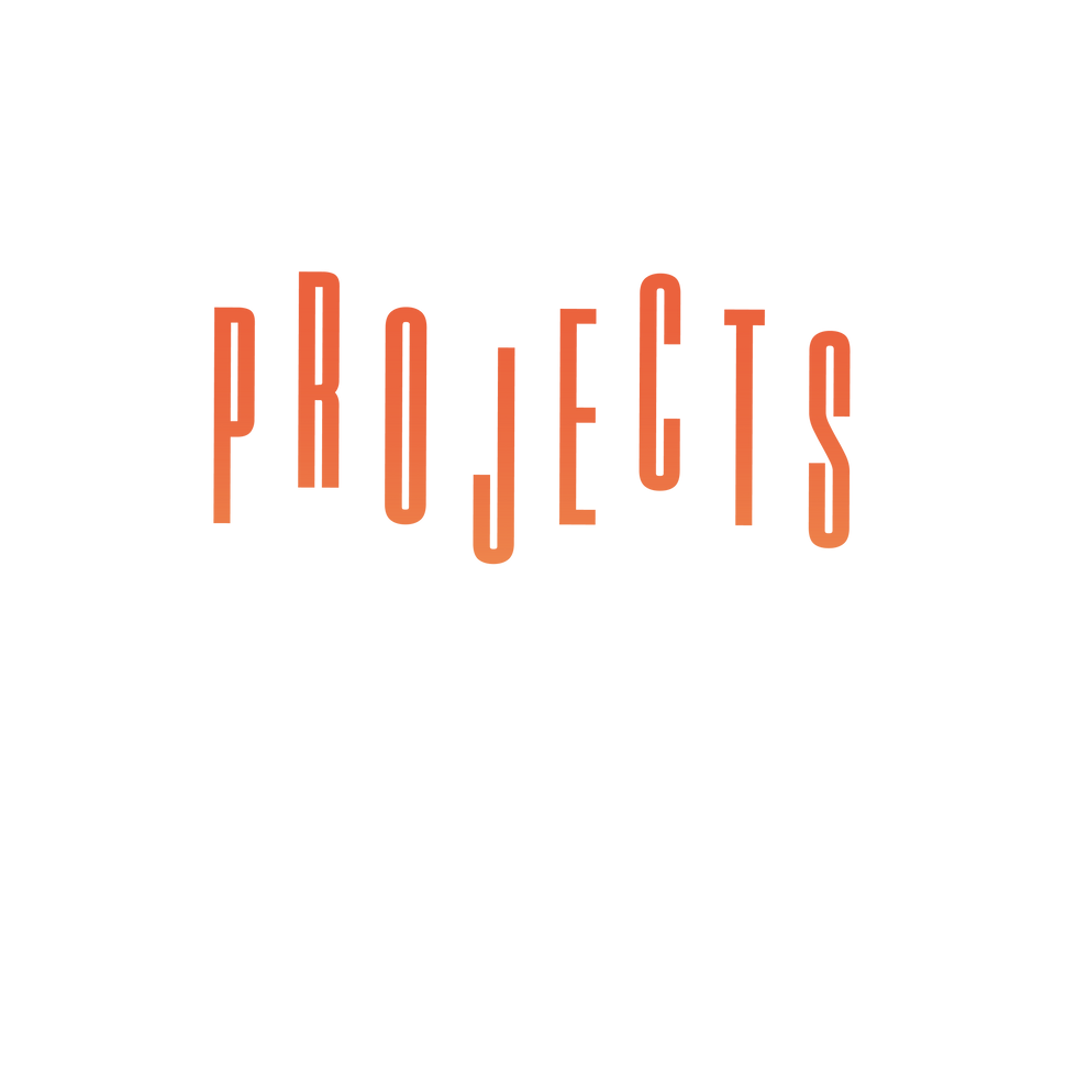 projects 2-01.png