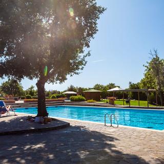 montescudaio-pool.jpg