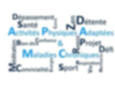 APA 1.jpg