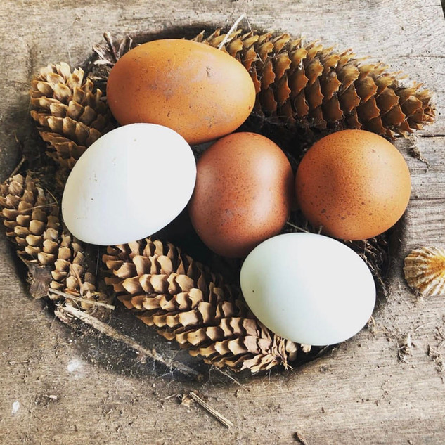 Linton Mill Eggs