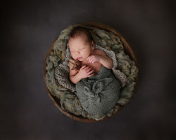 newborn in brown