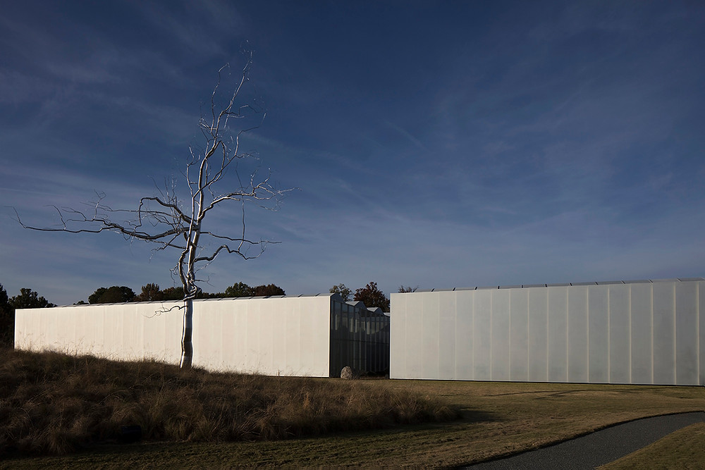 North Carolina Museum of Art Exterior