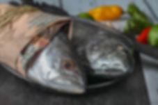 GASTRO Ceci Pescados BAJA.jpg