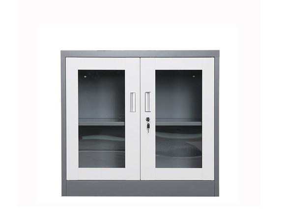 Low Swing Glass Door Cupboard