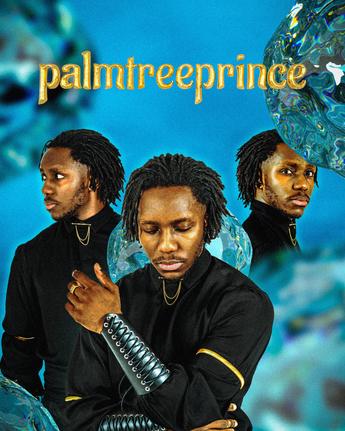palmtreeprince-Press-Photo-#1.png