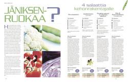B&K Sports magazine - layout