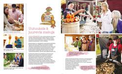 Brochure - layout & illustration
