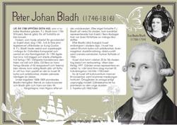 Bladh house - layout & illustration
