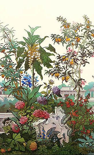 jardin-japonais-original-fond-blanc-aa-c