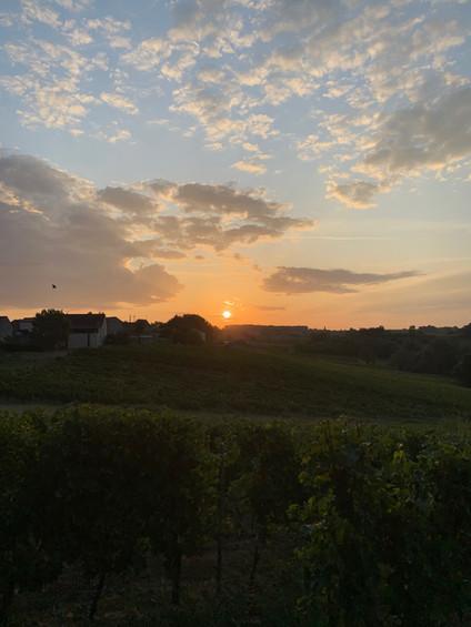 Un levée du soleil au domaine