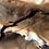 Thumbnail: Skyrim Elven Bow