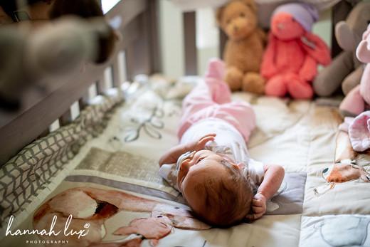 Hannah Lux Photography Newborn Portrait