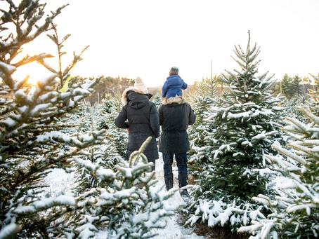 Winter Family Mini Session in Saratoga Springs, NY