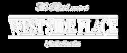 WSP white logo.png
