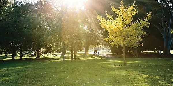 location-Park.jpg