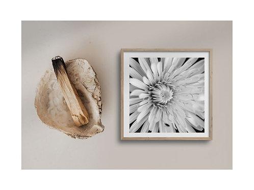 Covid Print uit de hand van Bienne / verschillende formaten vanaf 50€