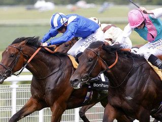 York Ganton Stakes Preview
