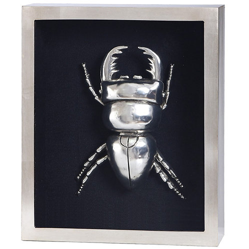 SILVER BEETLE FRAMED ART