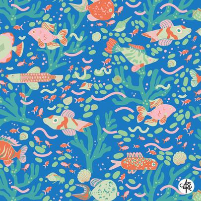 Coral-Reef1.jpg