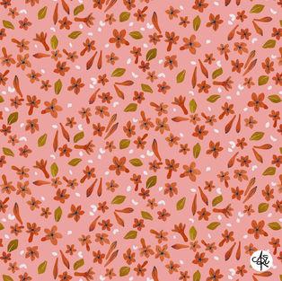 Pink Jasmine by Amelia Eaton