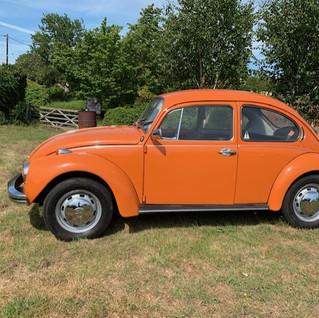Orange 1302s