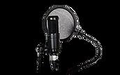 microphoneforwebsite.png
