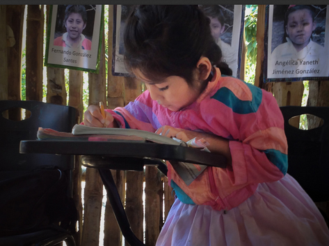 Transformar la escuela rural e indígena: Mendoza Zuany