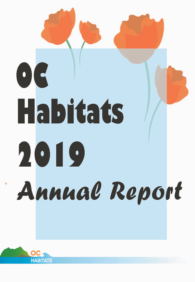 2019 Annual Report (Illustrator) (R)_Pag