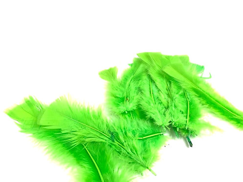 Decorative Green Feathers ( Fo Art & Craft ) (15 pcs ) ( 7 inch )