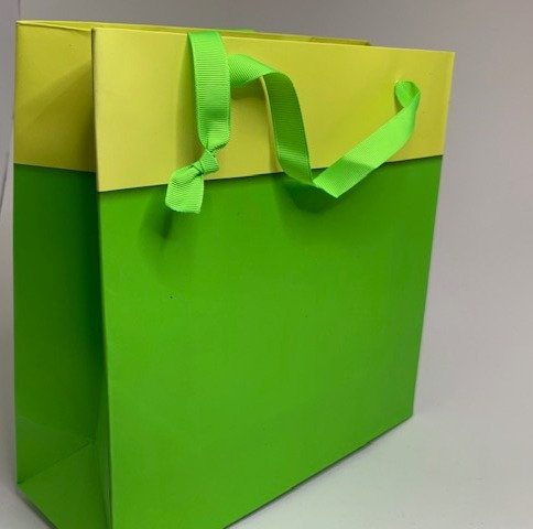 Green and Yellow Paper Bag (8 inch height approx)