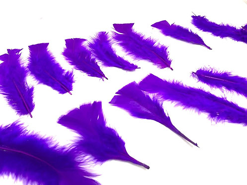 Decorative Purple Feathers (15 pcs ) ( 7 inch ) (For Art & Craft )