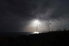 Low Light Composition by Julien Haye.jpg