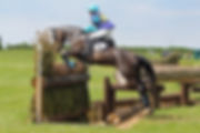 Annie Forsyth Horses