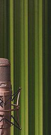 podcast-web1.jpg