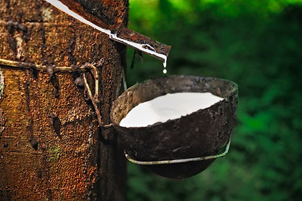rubber-tapping-large.jpg