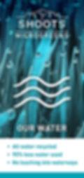 shoots+banner+water.jpg