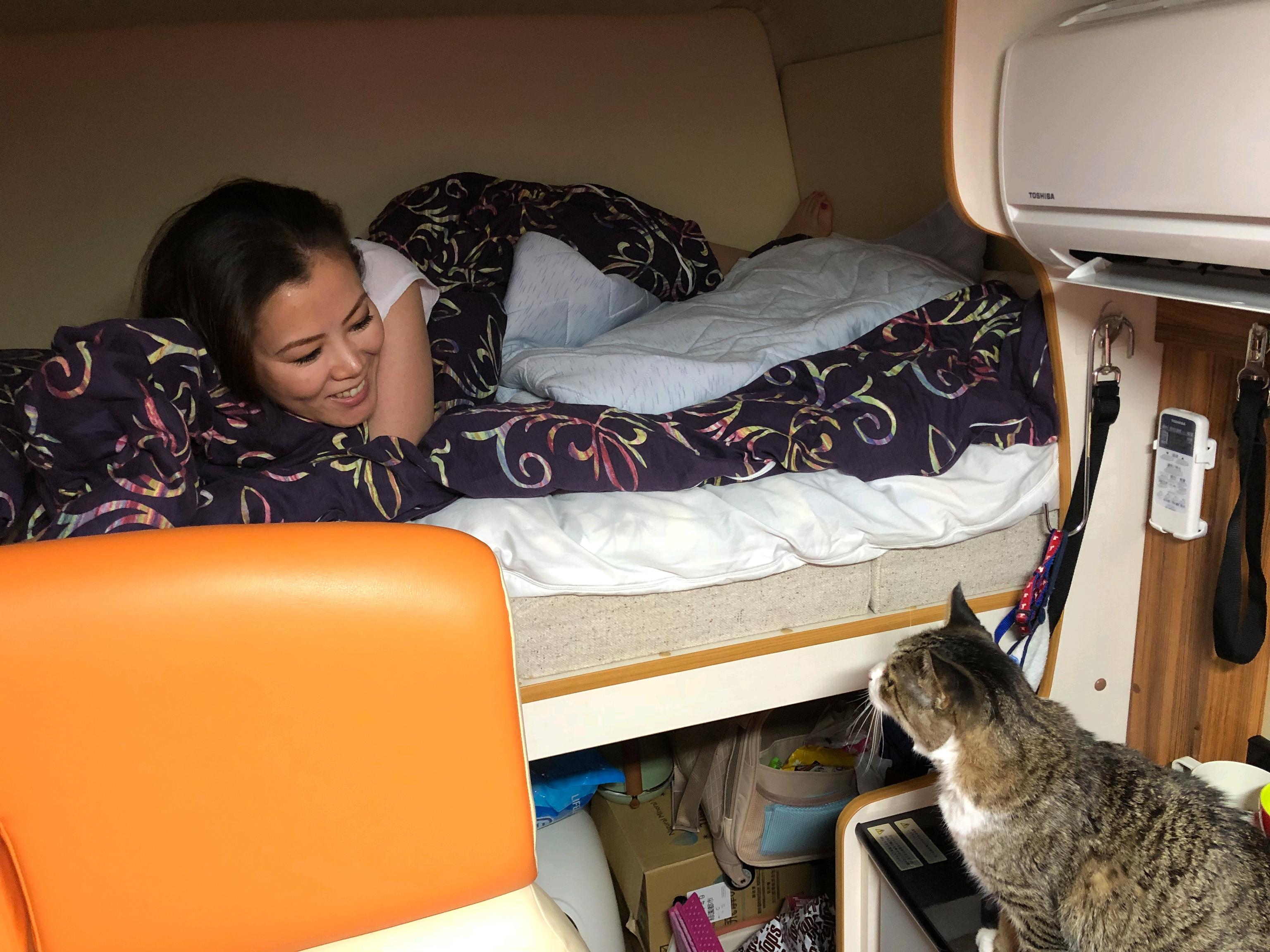 猫ちゃん旅行